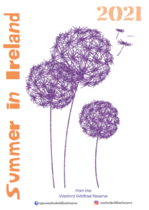 Summer in Ireland 2021 leaflet front cover